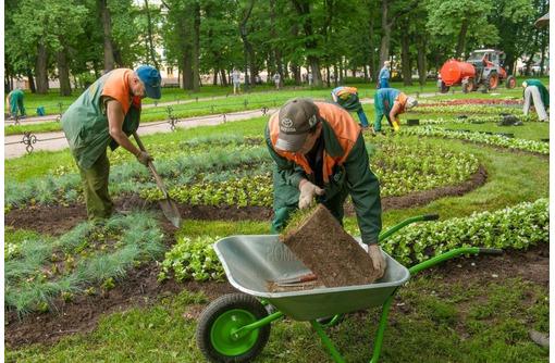 Работа, требуются рабочие парков, разнорабочие по благоустройству, Севастополь - Без опыта работы в Севастополе