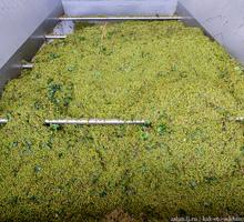 винодельня оборудование по переработки винограда - Продажа в Симферополе