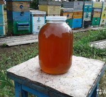 Продам мед - Пчеловодство в Севастополе