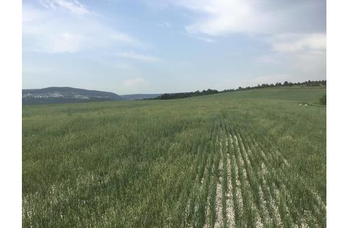 Участок сельхоз назначения - Участки в Севастополе