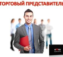 Торговый представитель продовольственных товаров - Менеджеры по продажам, сбыт, опт в Симферополе
