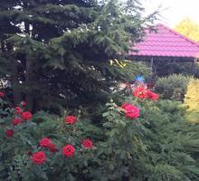 Продам дом в Феодосии (Береговое, Золотой пляж) - Дома в Феодосии