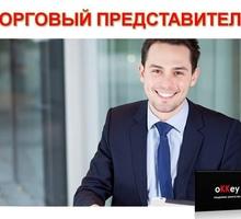 Торговый представитель (садовый  инвентарь) - Менеджеры по продажам, сбыт, опт в Севастополе