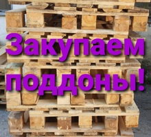 Закупаем деревянные поддоны - Хозтовары в Севастополе