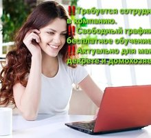 Менеджер в магазин, удаленно - Работа на дому в Армянске