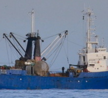 Для работы в Черном море на рыбопромысловое судно. - Другие сферы деятельности в Севастополе