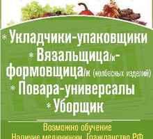 Вязальщица - формовщица (колбасных изделий) требуется - Рабочие специальности, производство в Ялте