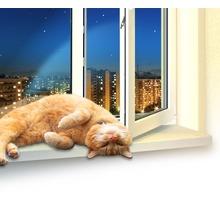 О!Кошки - Металлопластиковые окна, двери, балконы - Окна в Симферополе