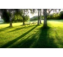Спил деревьев, покос травы, вспашка мотоблоком - Ландшафтный дизайн в Краснодарском Крае