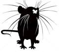 Дератизация. Уничтожение крыс быстро и качественно - Клининговые услуги в Краснодарском Крае