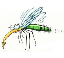 Дезинсекция. Уничтожение комаров быстро и качественно - Клининговые услуги в Краснодаре
