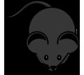 Дератизация. Уничтожение мышей быстро и качественно - Клининговые услуги в Краснодарском Крае