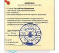 Апостиль на диплом об образовании - Переводы, копирайтинг в Краснодарском Крае