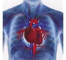 Лечение сердца,снижение давления точечно-биоэнергетическим массажем - Массаж в Анапе