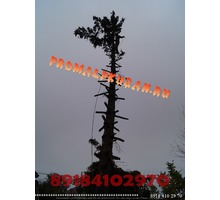 Спил деревьев Краснодар, не дорого Гарантия целостности окружающих объектов. - Ландшафтный дизайн в Краснодарском Крае