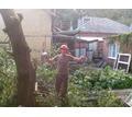 Спил деревьев любой  сложности (АЛЬПИНИСТ) , обрезка веток, покос травы - Ландшафтный дизайн в Краснодаре