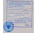 Апостиль на копии и переводы документов - Переводы, копирайтинг в Краснодаре