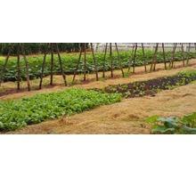Натуральная мульча/удобрение для огорода и сада Краснодар - Эко-продукты, фрукты, овощи в Краснодарском Крае