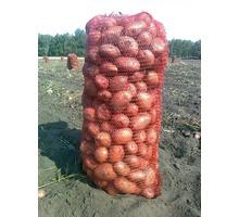 Краснодарский картофель оптом,картофель оптом в Краснодарском крае - Эко-продукты, фрукты, овощи в Краснодарском Крае