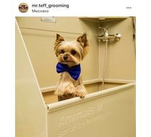 Стрижка собак и кошек. Салон для животных Mr.Teff - Груминг-стрижки в Новороссийске