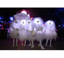 Светящиеся фьеки - пушистики на мероприятие - Свадьбы, торжества в Краснодарском Крае