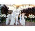 Клубная анимация, ангелы на встречу гостей - Свадьбы, торжества в Краснодаре