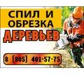 Спил и обрезка деревьев - Охрана, безопасность в Краснодарском Крае