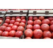 Продаем помидоры оптом в краснодарском крае, помидор оптом краснодарский - Эко-продукты, фрукты, овощи в Краснодарском Крае