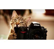 Краснодар . Фотосъёмка для сайта знакомств . Интернет продвижение под Ключ - Фото-, аудио-, видеоуслуги в Краснодаре