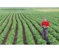Срочно требуются рабочие на сбор урожая ежедневная высокая оплата - Частичная занятость в Лабинске