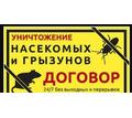 Уничтожение тараканов клопов клещей Белореченск - Клининговые услуги в Белореченске