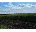 Земельный участок 1400 Га (пашня) - Участки в Краснодаре