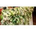 Организация и оформление свадеб - Свадьбы, торжества в Геленджике