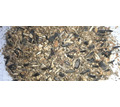 Предлагаем отходы семечки подсолнечника - Продажа в Краснодарском Крае
