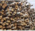 Продам дровяную березу и готовые дрова - Пиломатериалы в Краснодарском Крае
