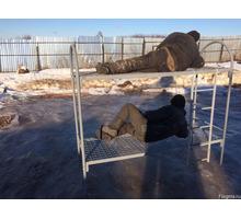 Железные кровати (1-но и 2-х ярусные) Апшеронск - Специальная мебель в Апшеронске