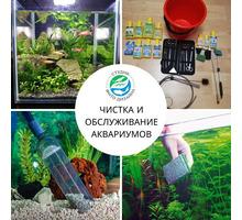 Обслуживание аквариумов высококлассное - Аквариумные рыбки в Краснодарском Крае