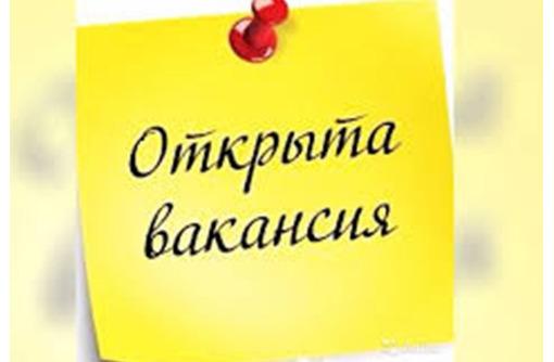Помощник руководителя в крупную компанию, фото — «Реклама Крымска»
