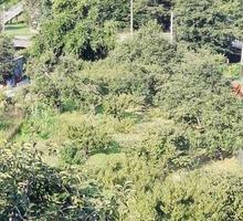 Продам участок 9 сот в Дагомысе - Участки в Сочи