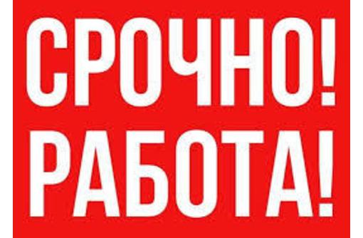 Менеджер по продажам в крупную компанию, фото — «Реклама Крымска»