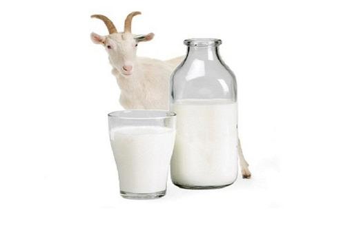 Козье молоко - Эко-продукты, фрукты, овощи в Новороссийске