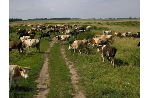 Хозяйство 9000 Га в Краснодарском крае - Участки в Краснодаре