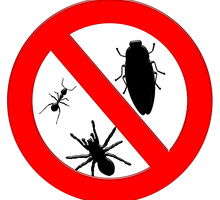 Уничтожение насекомых и грызунов. Эффект 100%. Полный пакет документов. Профессиональная техника. - Клининговые услуги в Краснодаре