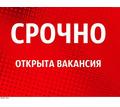 Маркетолог в интернет магазин - Без опыта работы в Гулькевичах