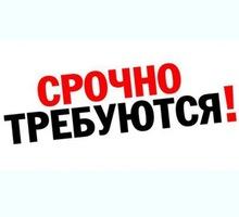 Директор в интернет-магазин - Без опыта работы в Курганинске