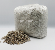Мицелий грибов вешенка зерновой от произодителя. - Грибоводство в Краснодаре