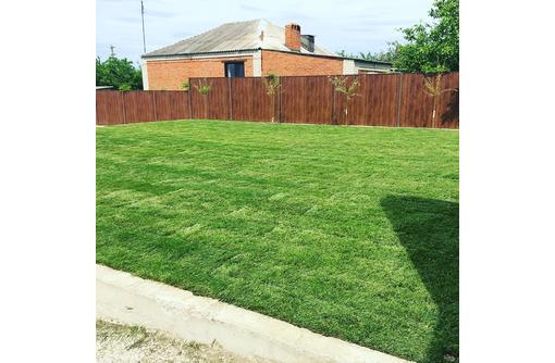 Посевной газон - Ландшафтный дизайн в Анапе