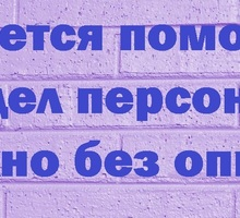 Помощник по персоналу - Управление персоналом, HR в Краснодаре