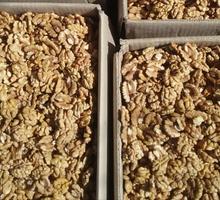 Орех грецкий чищенный,разных фракций - Эко-продукты, фрукты, овощи в Сочи