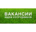 Секретарь-референт - Секретариат, делопроизводство, АХО в Краснодарском Крае